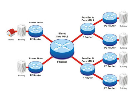 Biznet Multi Protocol Label Switching (MPLS) Topology